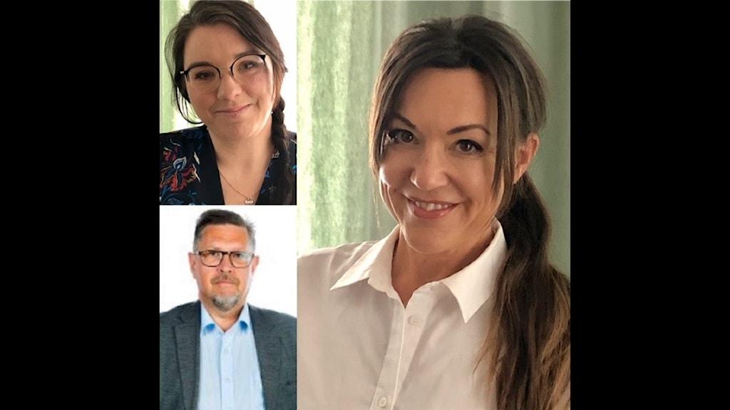 Anna Herdy, Olov Abrahamsson och Caroline Dahlman medverkade i dagens panel.