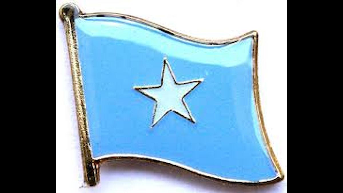 Somaliska flaggan som pin