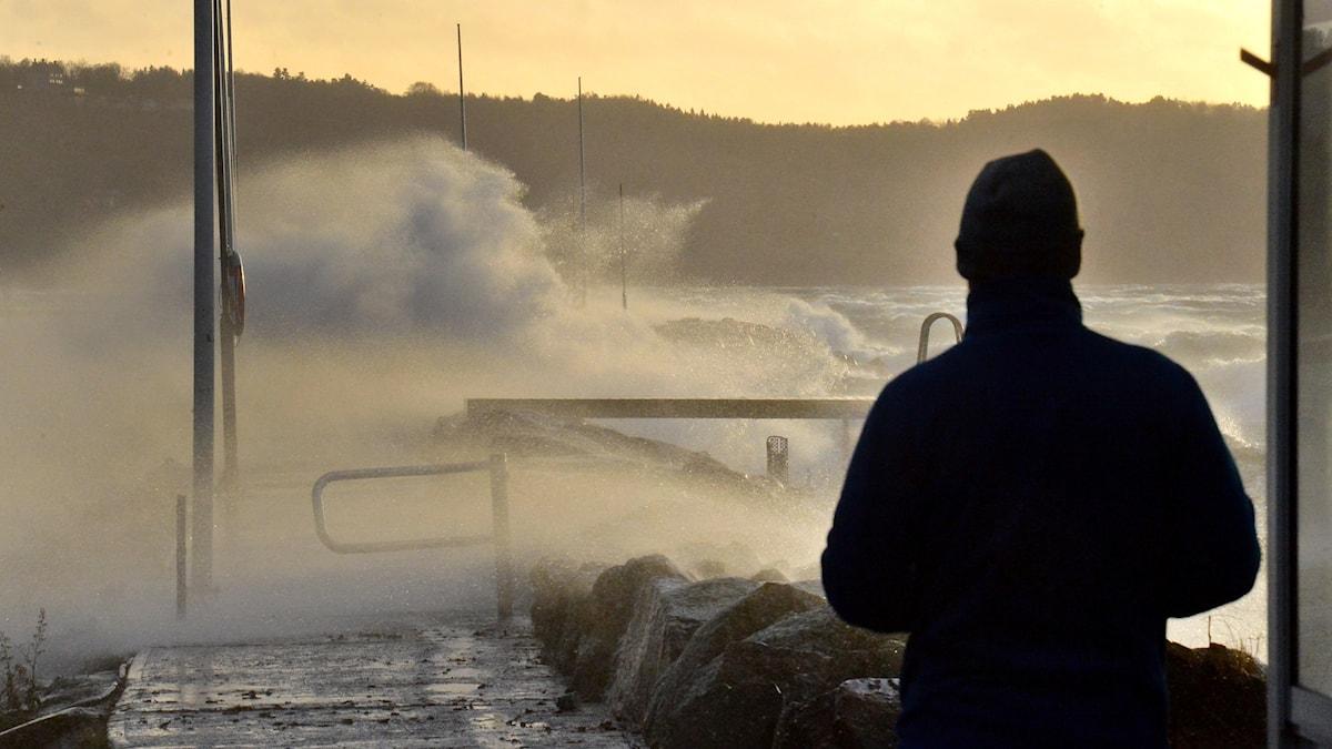 Hårda vindar över Vättern, här hamnen i Gränna där det blåste 32 m/s.