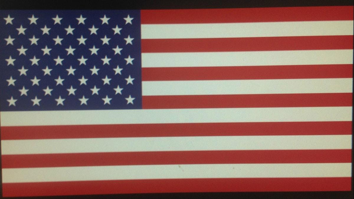 Yhdysvaltain punavalkoraitainen tähtilippu. foto: Erpo Heinolainen SR Sisuradio