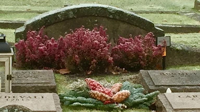 Hautakivien välissä käpyinen seppele ja punaisia kanervia.