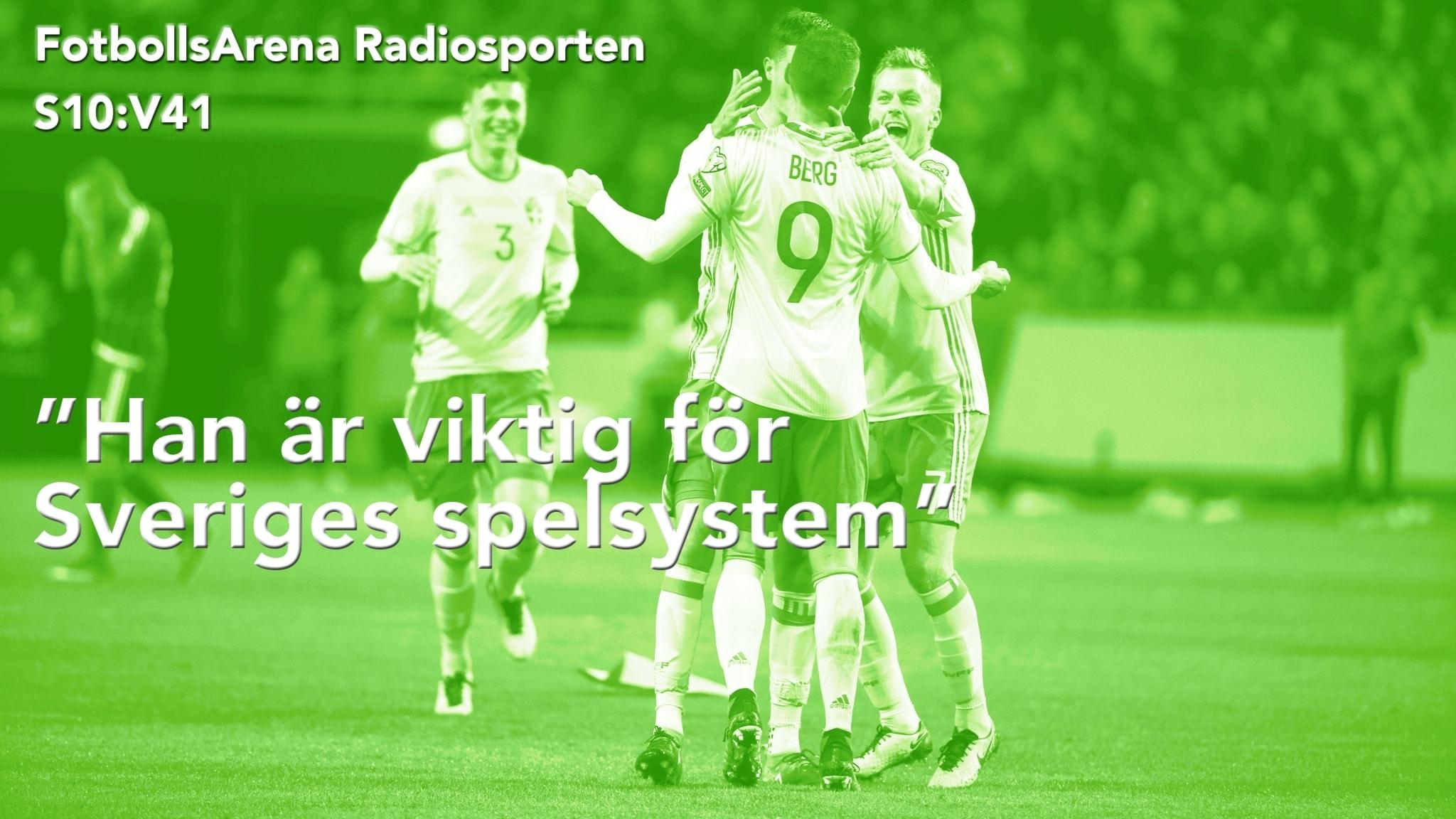 Svenskt jubel under VM-kvalet.