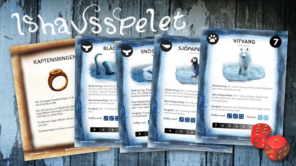 Ishavsspelet - ett kortspel