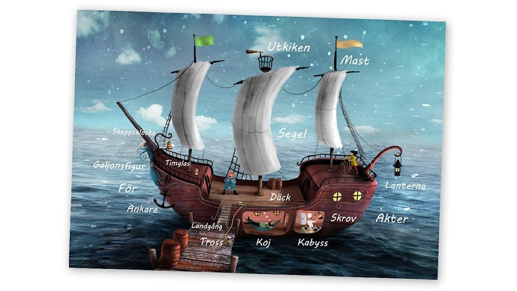 Skeppsfakta - lär dig delarna på ett skepp