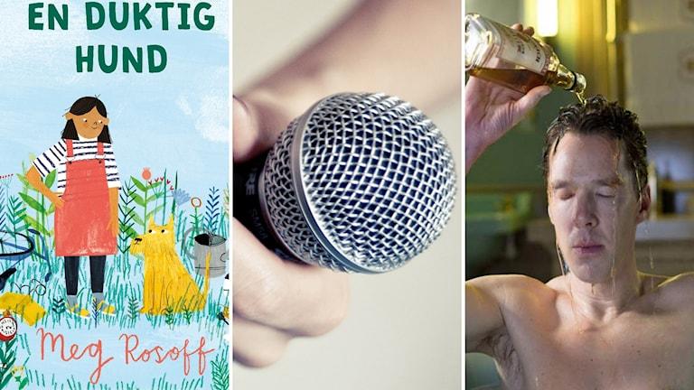 """Meg Rosoffs barnbok """"En duktig hund"""", podcasten """"85-95"""" och tvserien """"Patrick Melrose""""."""