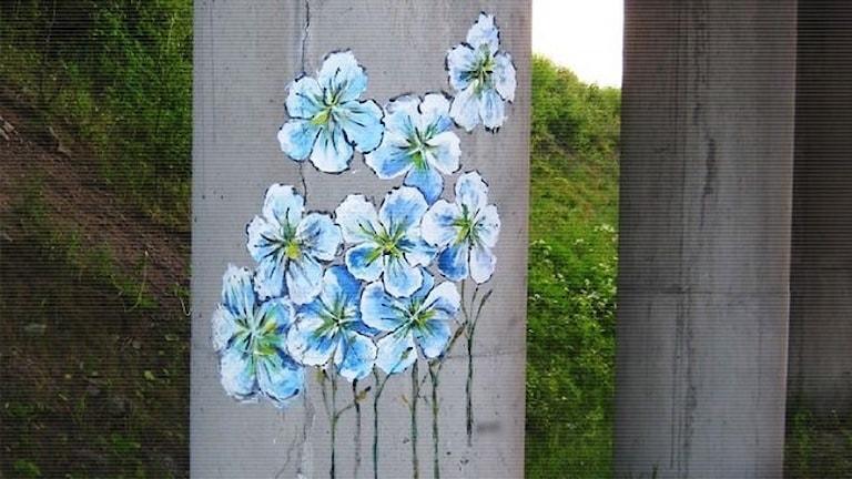 grafitti polisens bild
