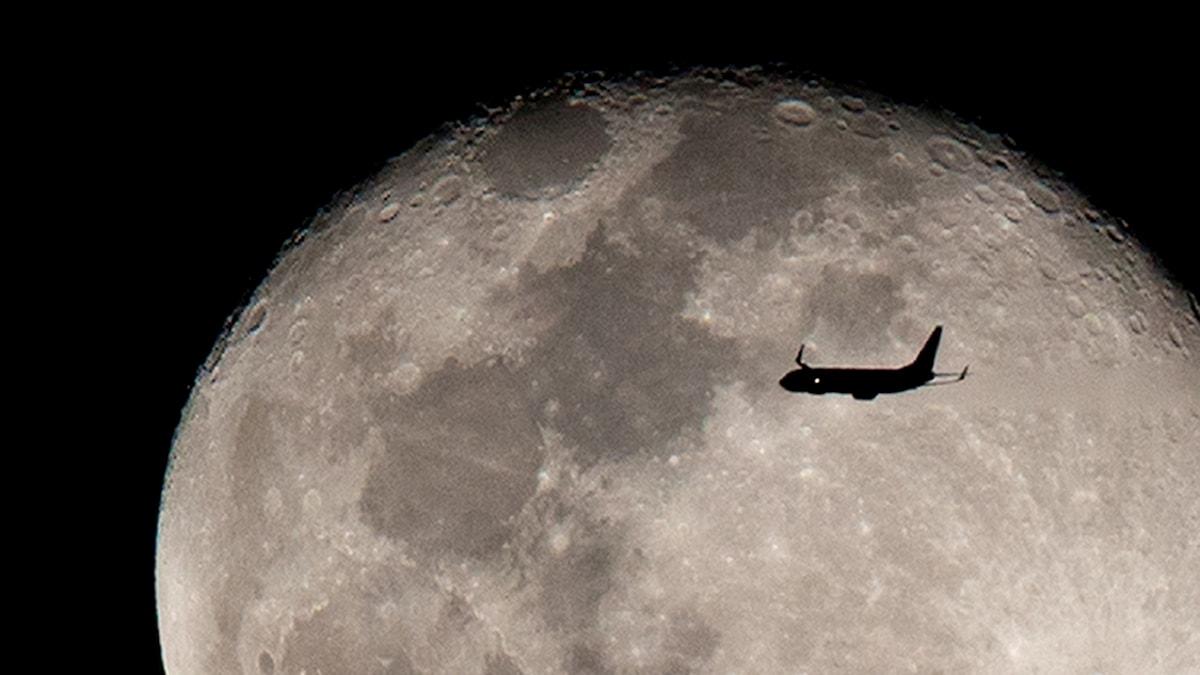Siluetten av ett flygplan mot en stor fullmåne.