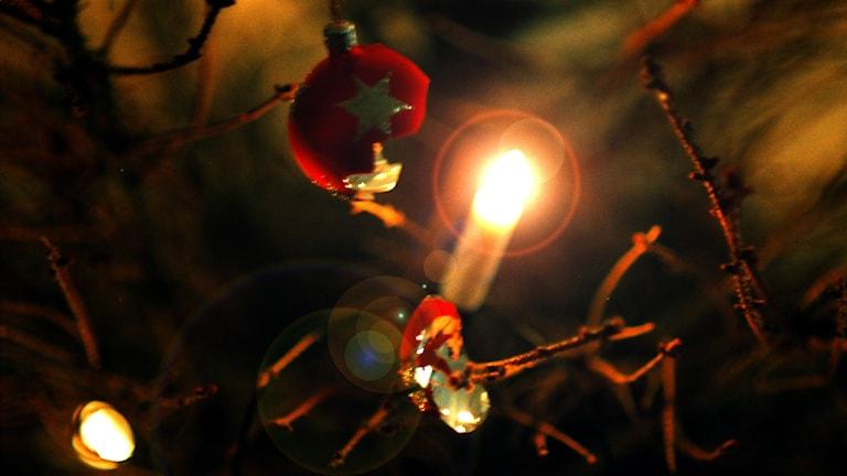 En trasig julgranskula och ett elektriskt julgransljus i en nästan barrlös julgran.