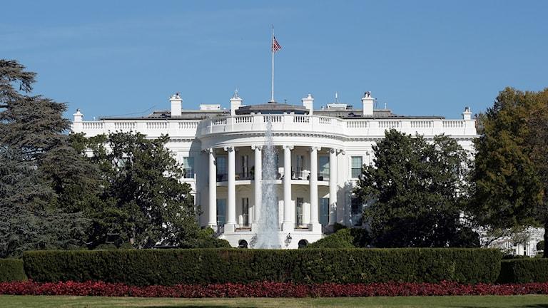 Vita huset i Washington USA.