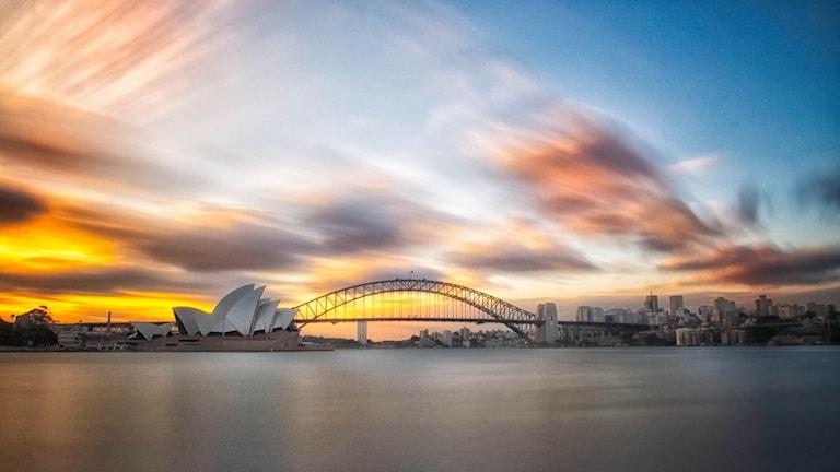 Vy över hamninloppet till Sydney med operahuset karaktäristiska profil.