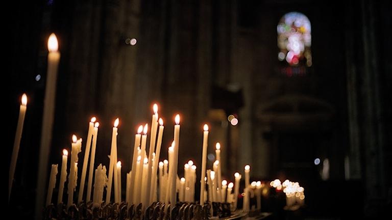 En stor mängd långa smala stearinljus brinner inne i ett kyrkorum.
