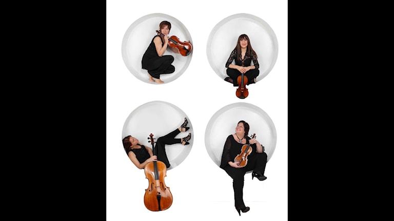 Medelmmarna i Vertavokvartetten sitter i cirklar med sina instrument.