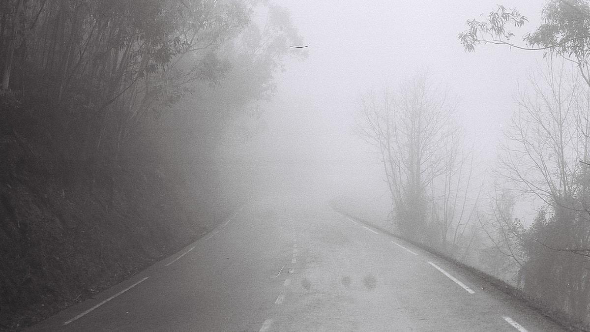 En landsväg i tät dimma.