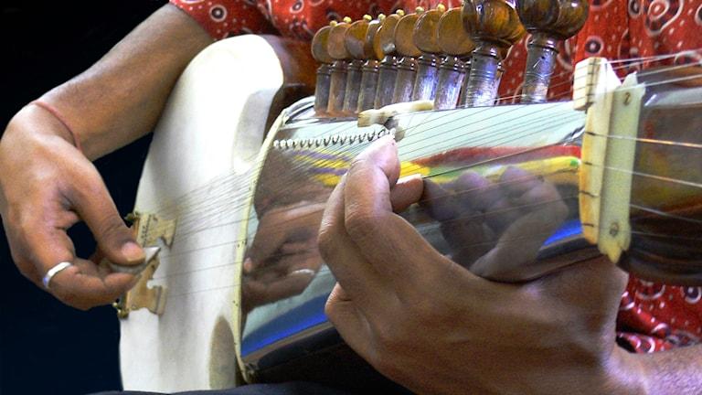 Närbild på greppbrädan på det indiska stränginstrumentet sarod.