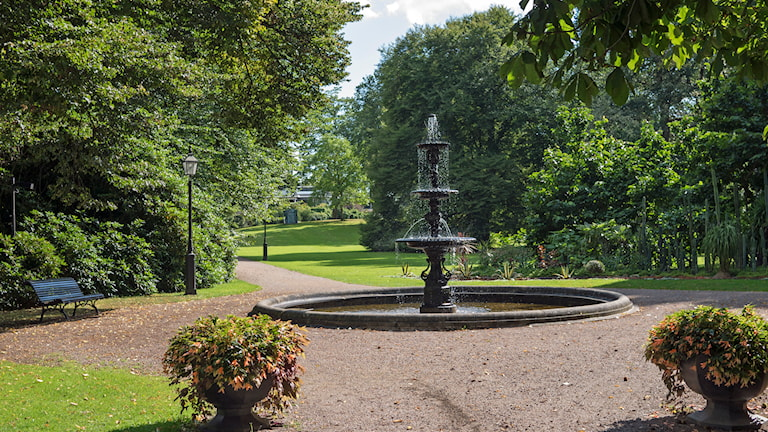 Ronneby Brunnspark (Foto: Lisbeth Ekman/Privat)