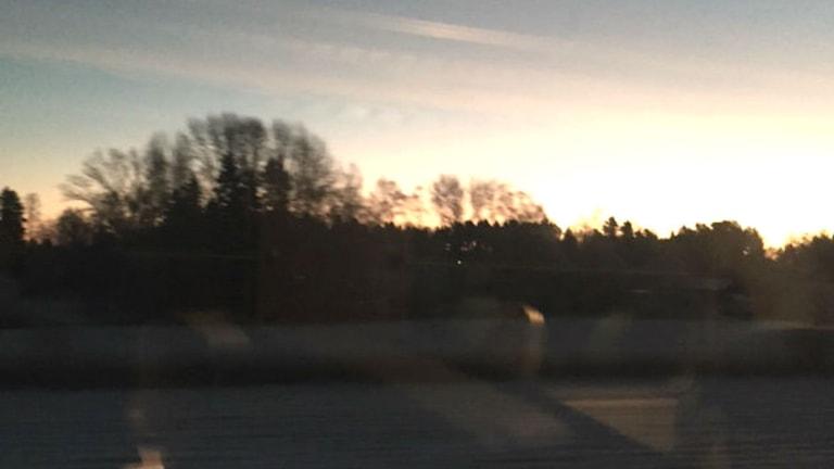 Utsikt från tåget mellan Uppsala och Stockholm. Foto: Eva Wadman
