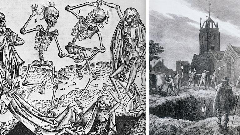 Digerdöden minskade Europas befolkning med en tredjedel under medeltiden. (Foton: Nuremberg Chronicle och Oxford Science Archive/TT)