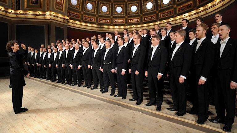 Kören Orphei Drängar sjunger i universitetsaulan i Uppsala. Cecilia Rydinger Alin dirigerar.