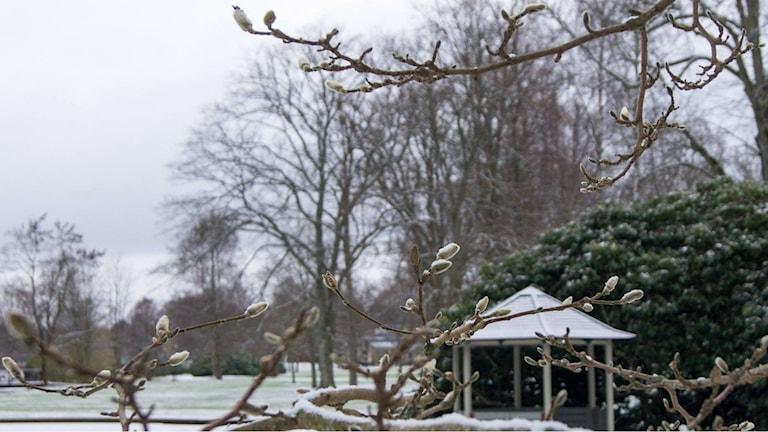 Ronneby brunn vinterbild