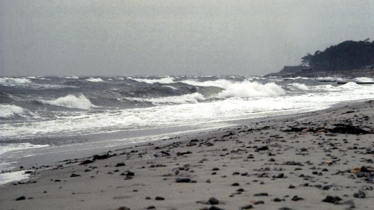 Vågor som slår in på sandstrand på Österlen.