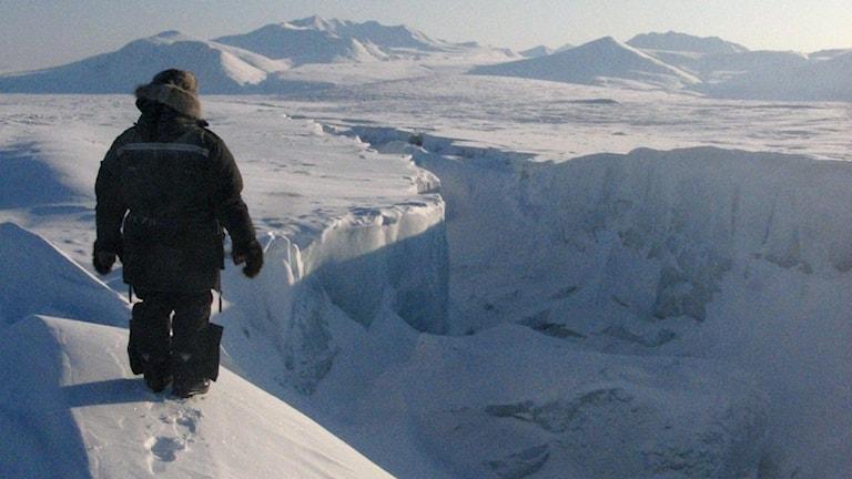 Person i förgunden begrundar islandskapet i Arktis.