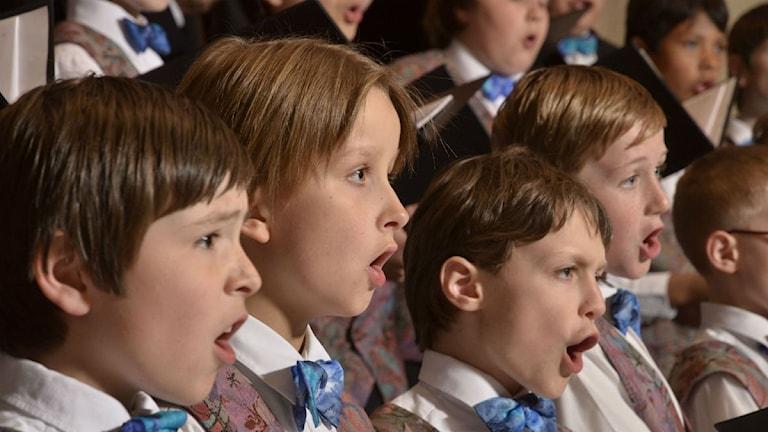 Capella Vocalis. Foto: Pressbild. http://bit.ly/cvocalis