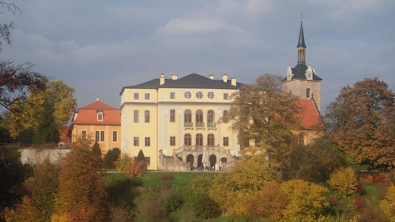 Slottet i Ettersburg i Weimar i Tyskland omgivet av träd i höstens färger.