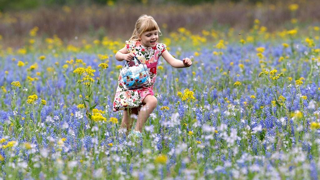 Flicka bland blommor