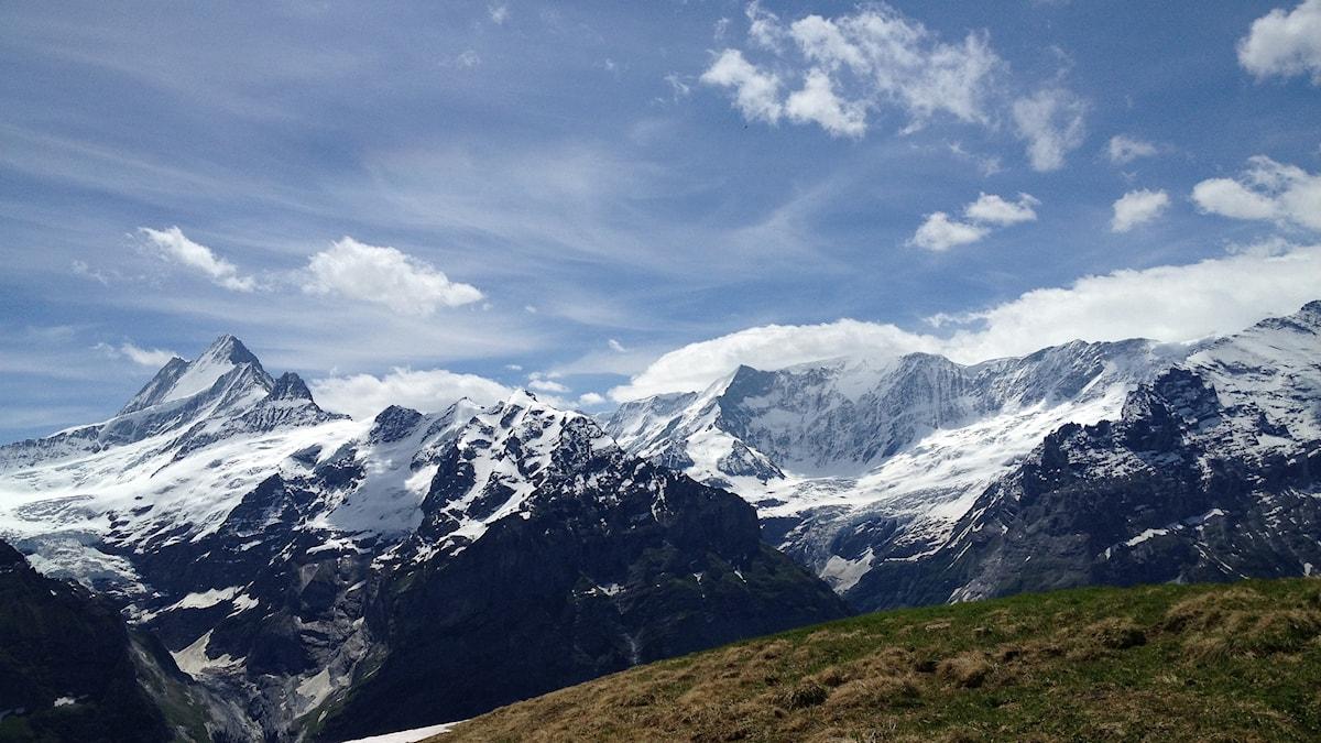 Snöklädda bergstoppar i de schweiziska alperna.