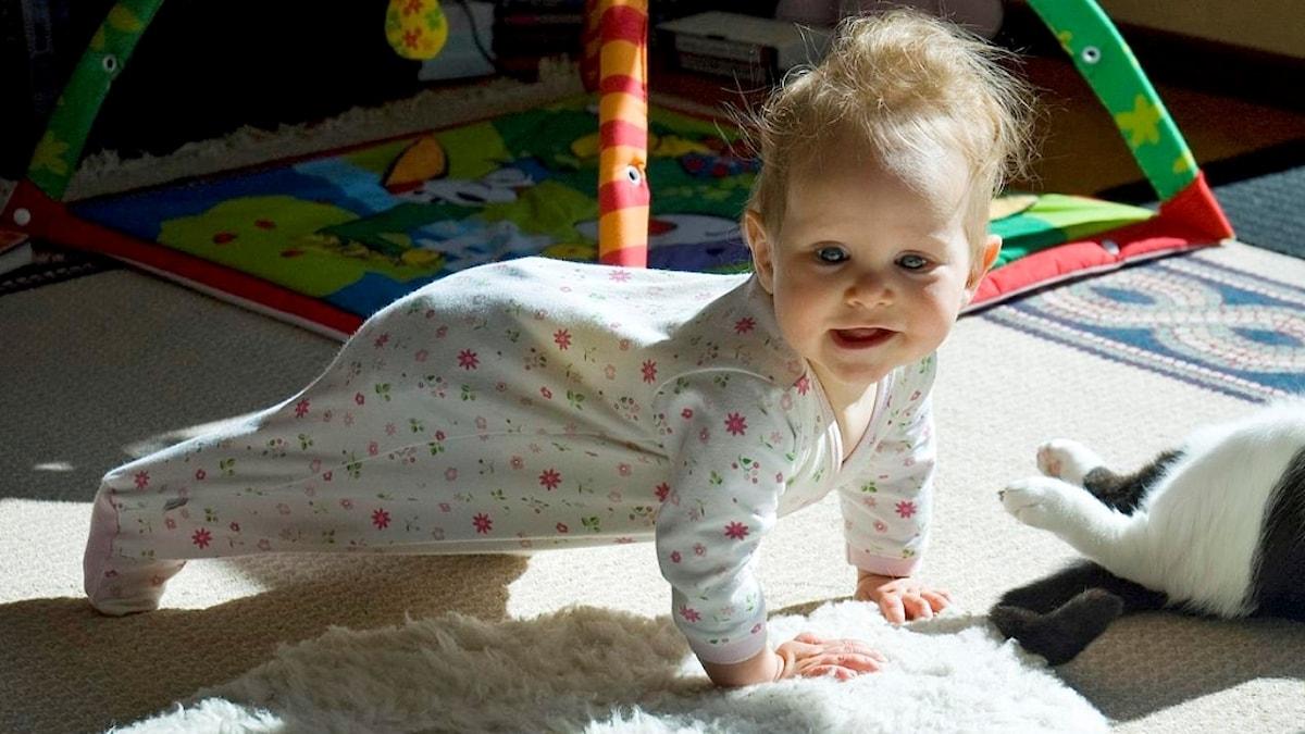 En bebis iklädd pyjamas står på tår och armar likt en armhävning.