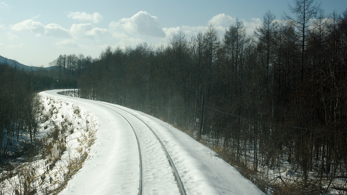 Ett tomtjärnvägsspår slingrar sig bort mot horisonten.