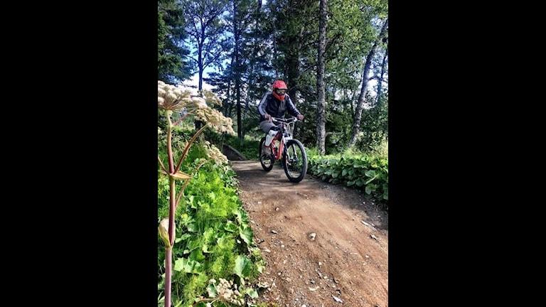 Jan Karlsson är ute och cyklar i Åre
