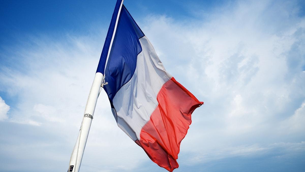 Den franska flaggan som vajar mot en blå himmel.