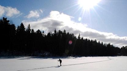 En ensam skidåkare åker i en skidspår på ett snötäckt öppet fält eller en sjö. Solen skiner från en klar himmel.
