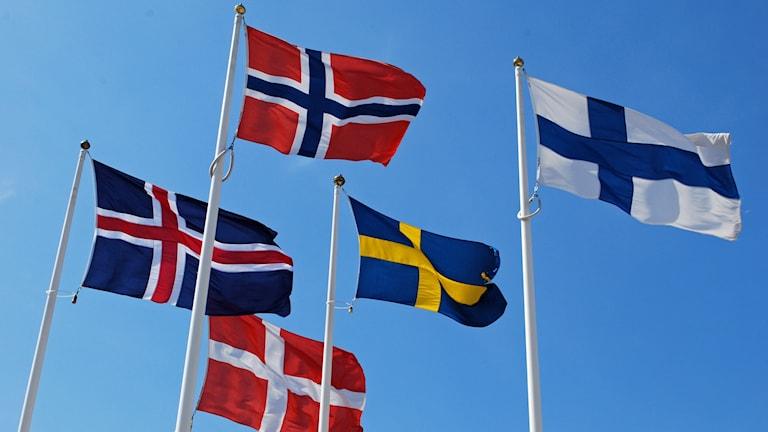 Islands flagga, Norges flagga, Danmarks flagga, Sveriges flagga och Finlands flagga vajar mot en blå himmel.
