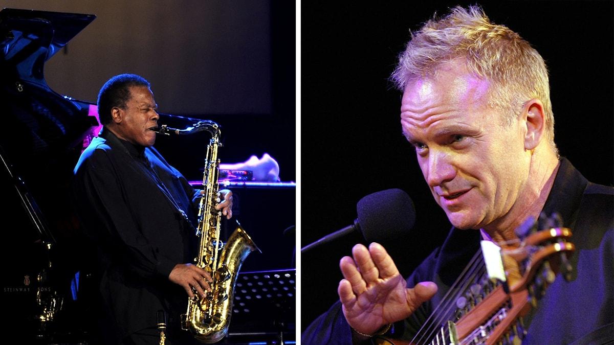 Jazzsaxofonsisten Wayne Shorter och artisten Sting i en tvådelad bild.