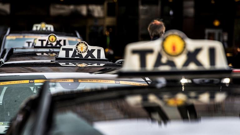 Taxiskyltar på taken på flera taxibilar som står i kö.