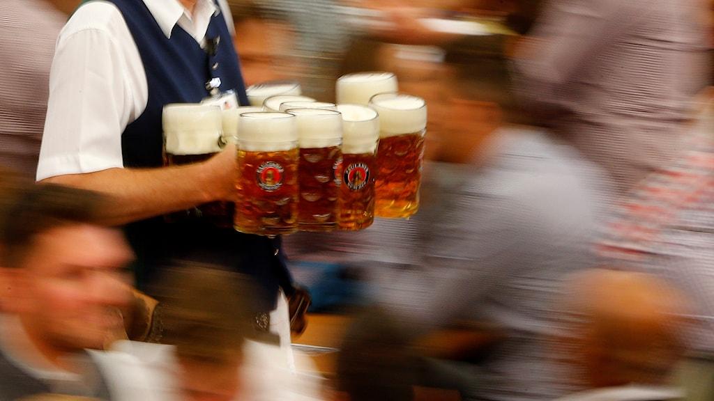 En servitör med många öl i handen under oktoberfesten i Tyskland.