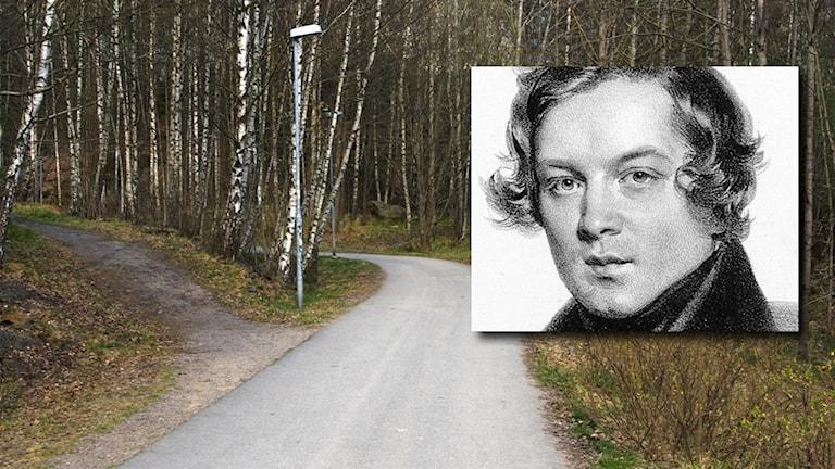 Robert Schumann och en genväg bredvid en cykelväg.