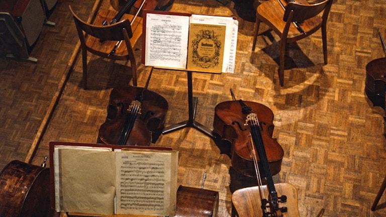Några cellor står vilade mot stolar bland notställ i en orkester som för tillfället är tom på musiker.