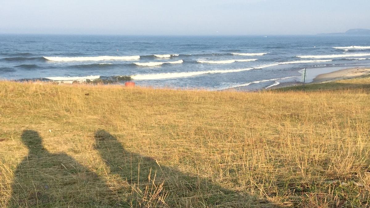 Skuggorna av två personer vid strandkanten på Österlen i Skåne.
