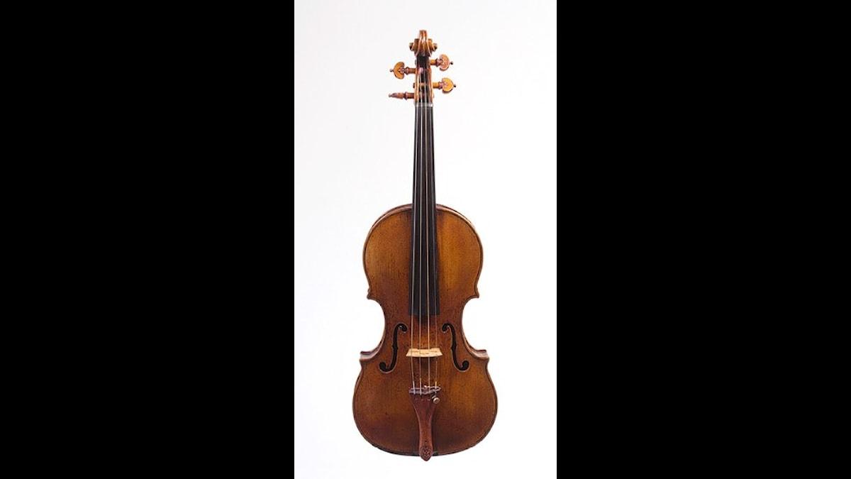 En sådan här har han inte! En violin av märket Amati. Däremot har han både en Stradivarius och en Guarneri del Gesu.