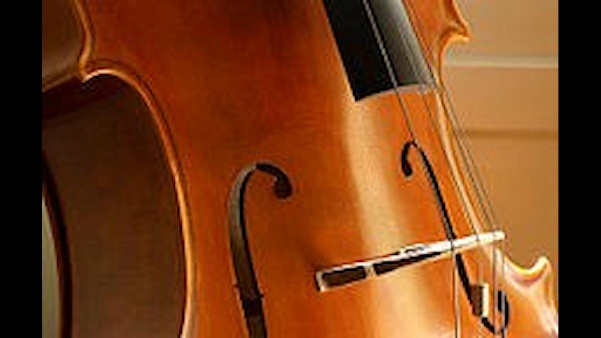 Nederländske Jacob Klein var förtjust i cellon, precis som samtida Bach på sitt håll.