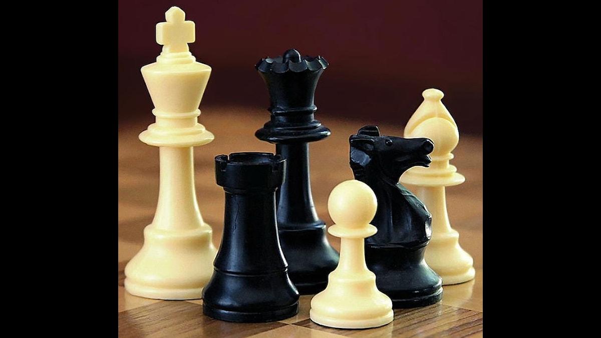 Olika schackpjäser, bonde, häst, löpare, dam och kung.