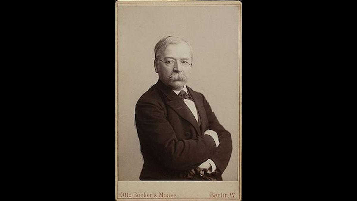 Woldemar Bargiel, bild från 1885