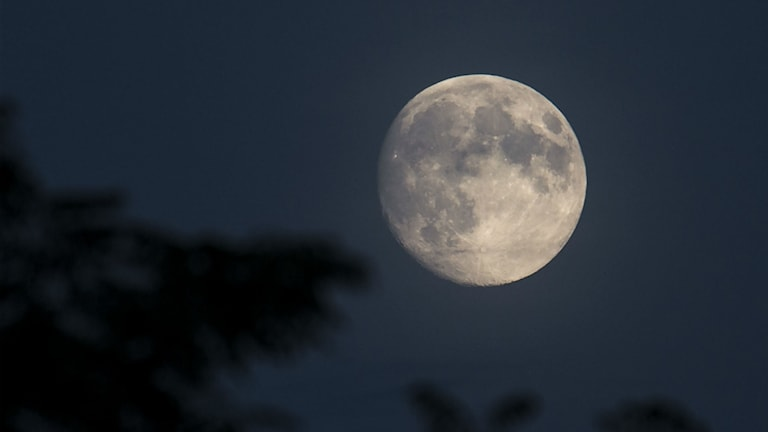Fullmåne.