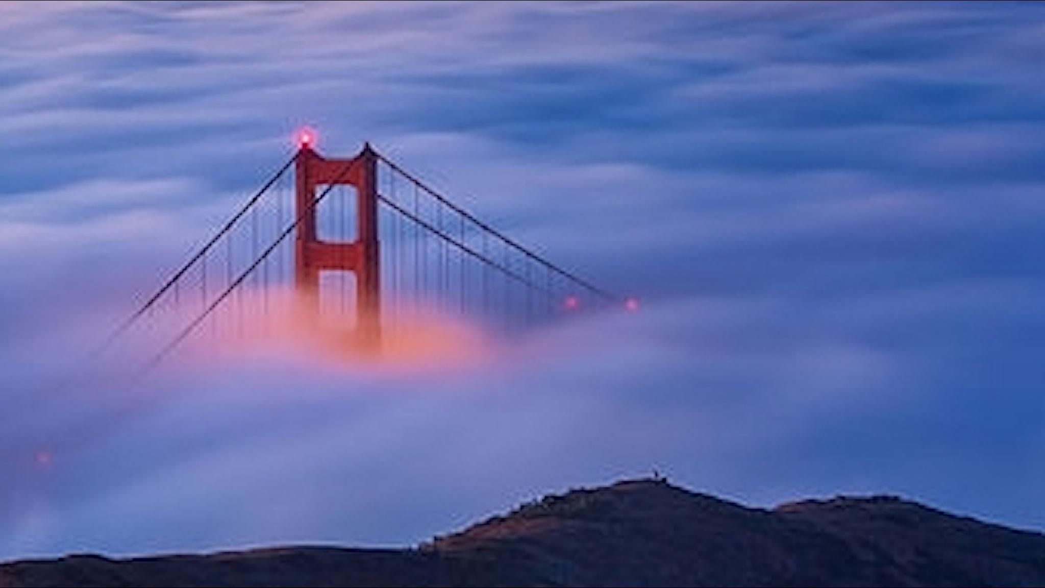 Golden Gate-bron i dimma
