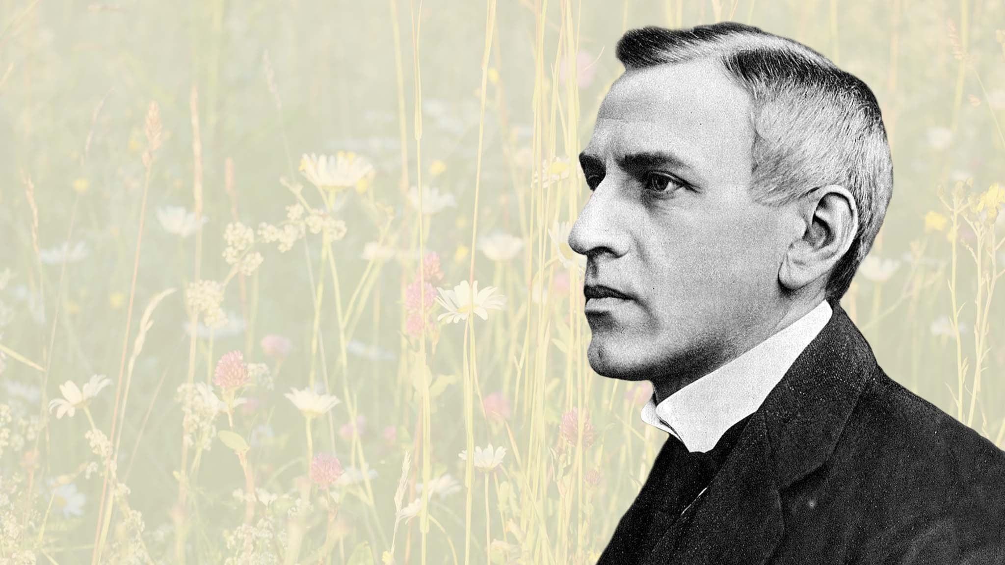 Wilhelm Stenhammar.