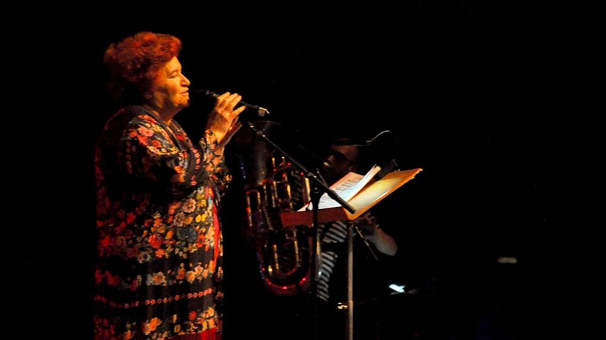 Den turkiska singer-songwritern Selda Bağcan.
