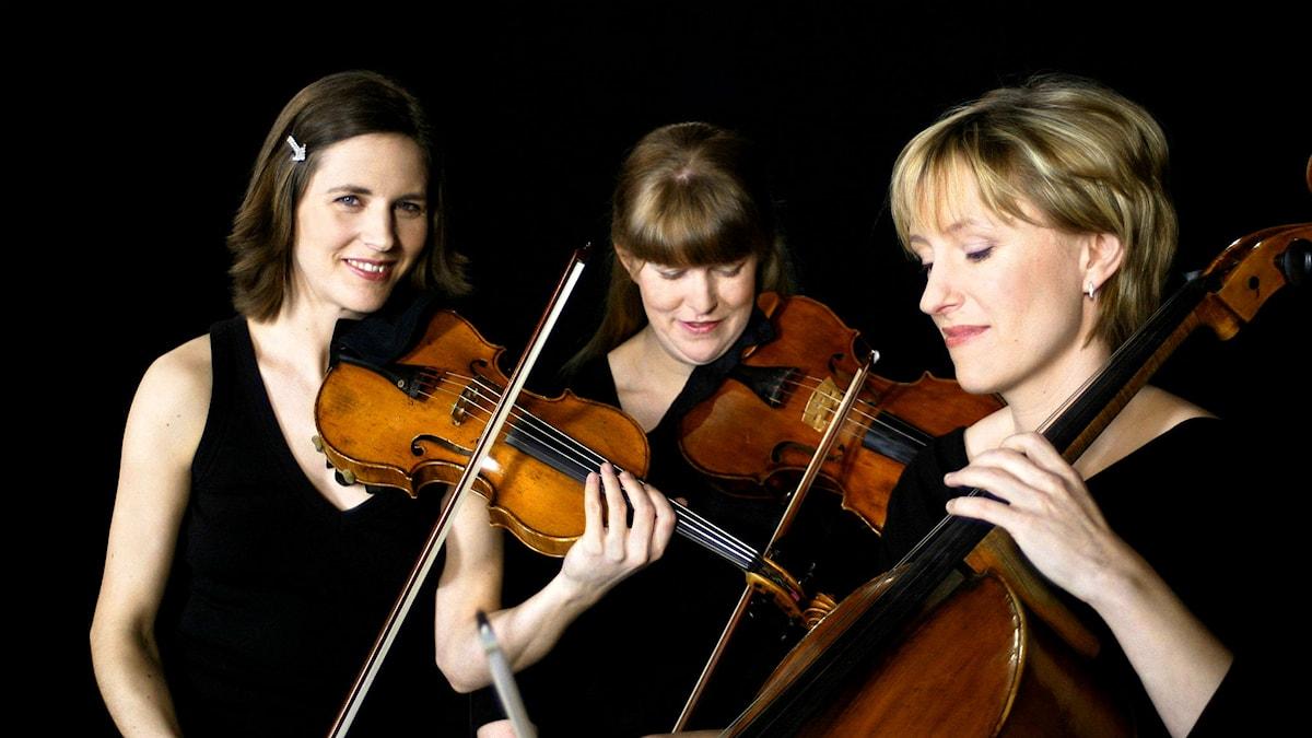 Trio ZilliacusPerssonRaitinen. Pressbild/zpr.se